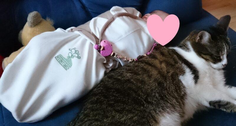 Gut gepuckt ist halb geschlafen – Die Puckhilfe von Nonomo