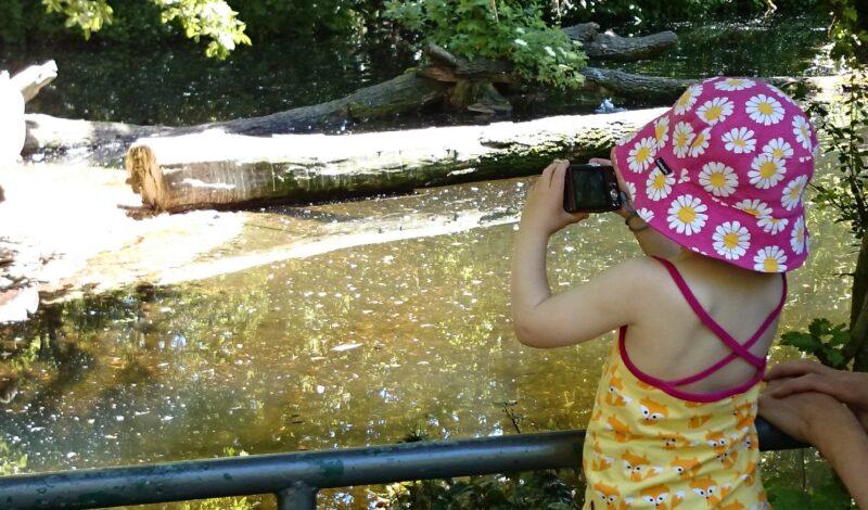 Die große Frage: Foto/Video machen oder Moment genießen?