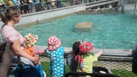 """Ein """"Blind Date"""" in der Wilhelma – unser Besuch im Stuttgarter Zoo"""