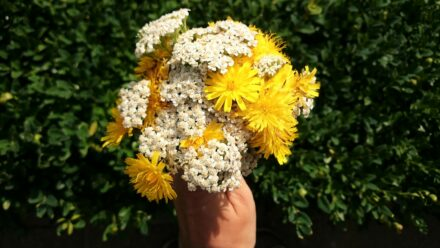 Ein Blumenstrauß für DICH….
