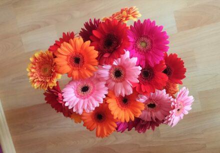 Ein September-Blumenstrauß für DICH….