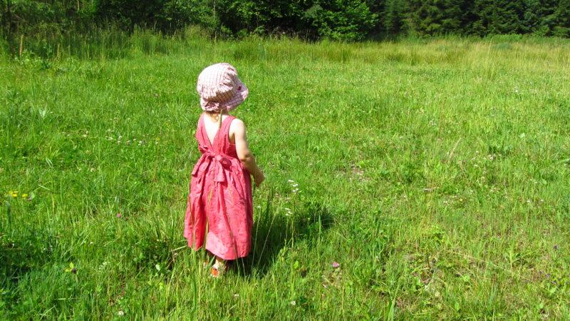 """Gewinnspieltipp: """"Kinder entdecken die Natur"""" – Gewinnt für eure KiTa 1 von 50 Baumentdecker-Sets des WWF Deutschland"""