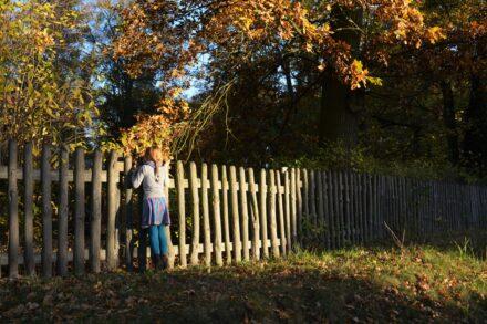 Es wird Zeit für eine Farbexplosion im Herbst: Die Herbstkollektion von Maxomorra! + Gewinnspiel