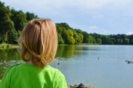 Ein Wochenende in Dresden, mit einem Ausflug nach Meißen und Ellas erster Kutschfahrt!