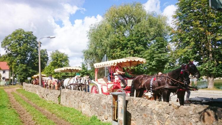 Pferdekutschen Kutschfahrt