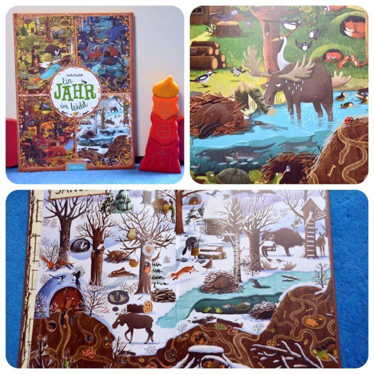 Ein Jahr im Wald Buch Kinderbücher Kinderbuch
