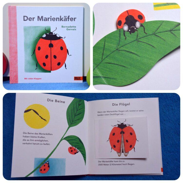 Der Marienkäfer Buch Kinderbücher Kinderbuch