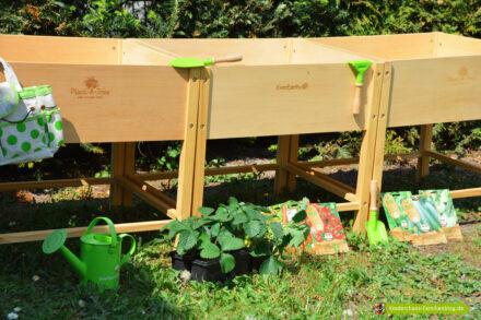 Mit EverEarth wird es grün und lecker in unserem Garten!