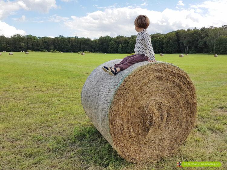 Sommerurlaub Familienurlaub Urlaub Landleben Feld Heuballen