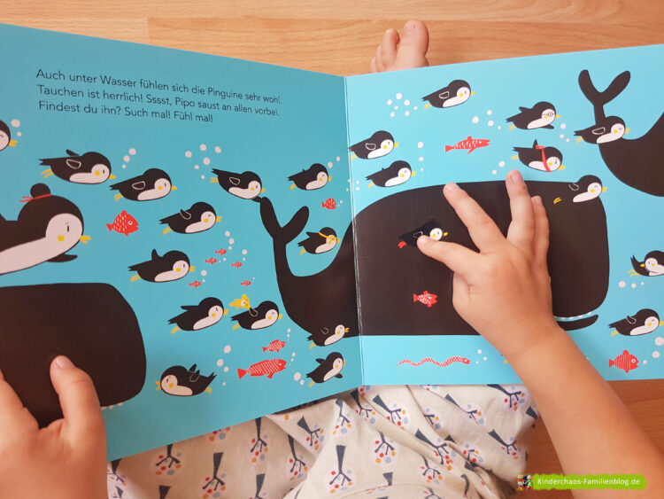 Wo ist Pipo Pinguin?