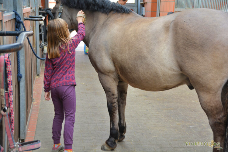 Smafolk Herbst Reiterhof Pferde Stall Kinderkleidung Äpfel