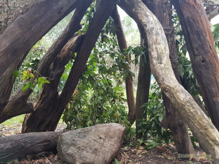 Buden bauen Coppenrath Spielplatz Baumstämme Tipi
