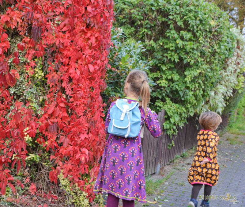 Maxomorra Herbst Kleid