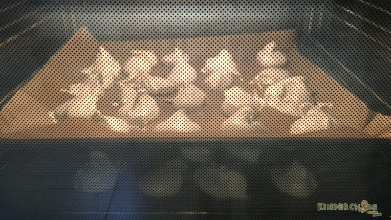 Baiser Ofen backen