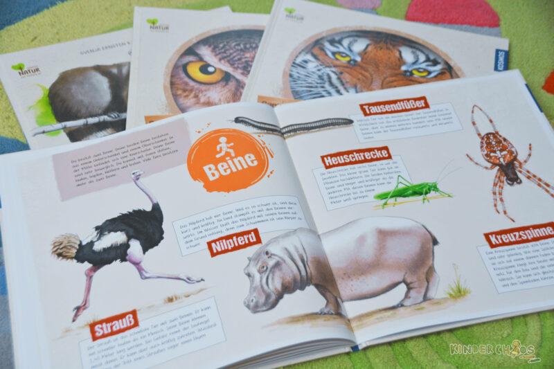 Kosmos Natur von Anfang an Tiere Kinderbuch Sachbücher
