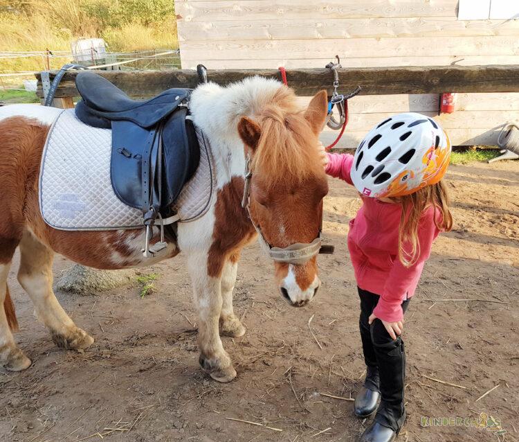 Jahresrückblick 2017 Pferde reden Familie Kinder Reiterhof Familienblog