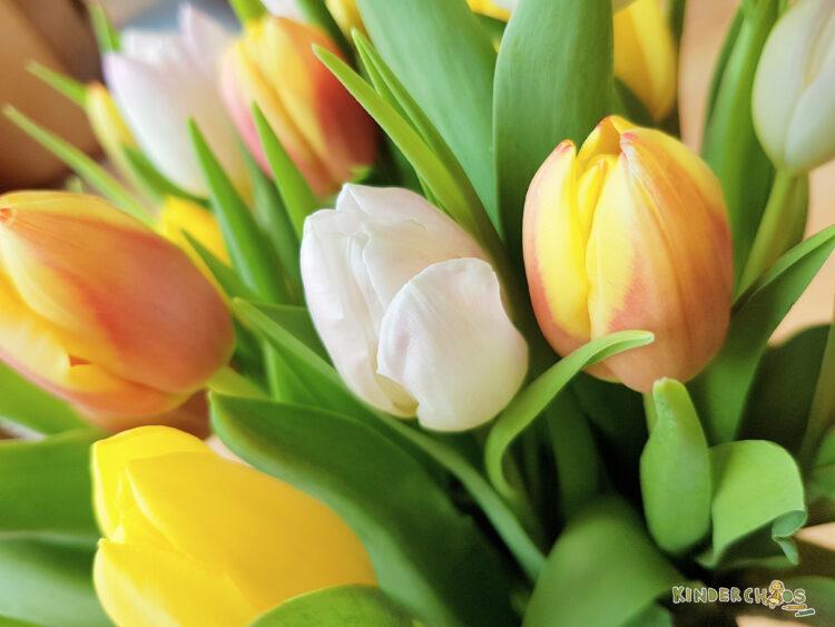 Fünf Tulpen blühen Fingerspiel Frühling Kindergarten Kinderkrippe Kindertagespflege Tagesmutter
