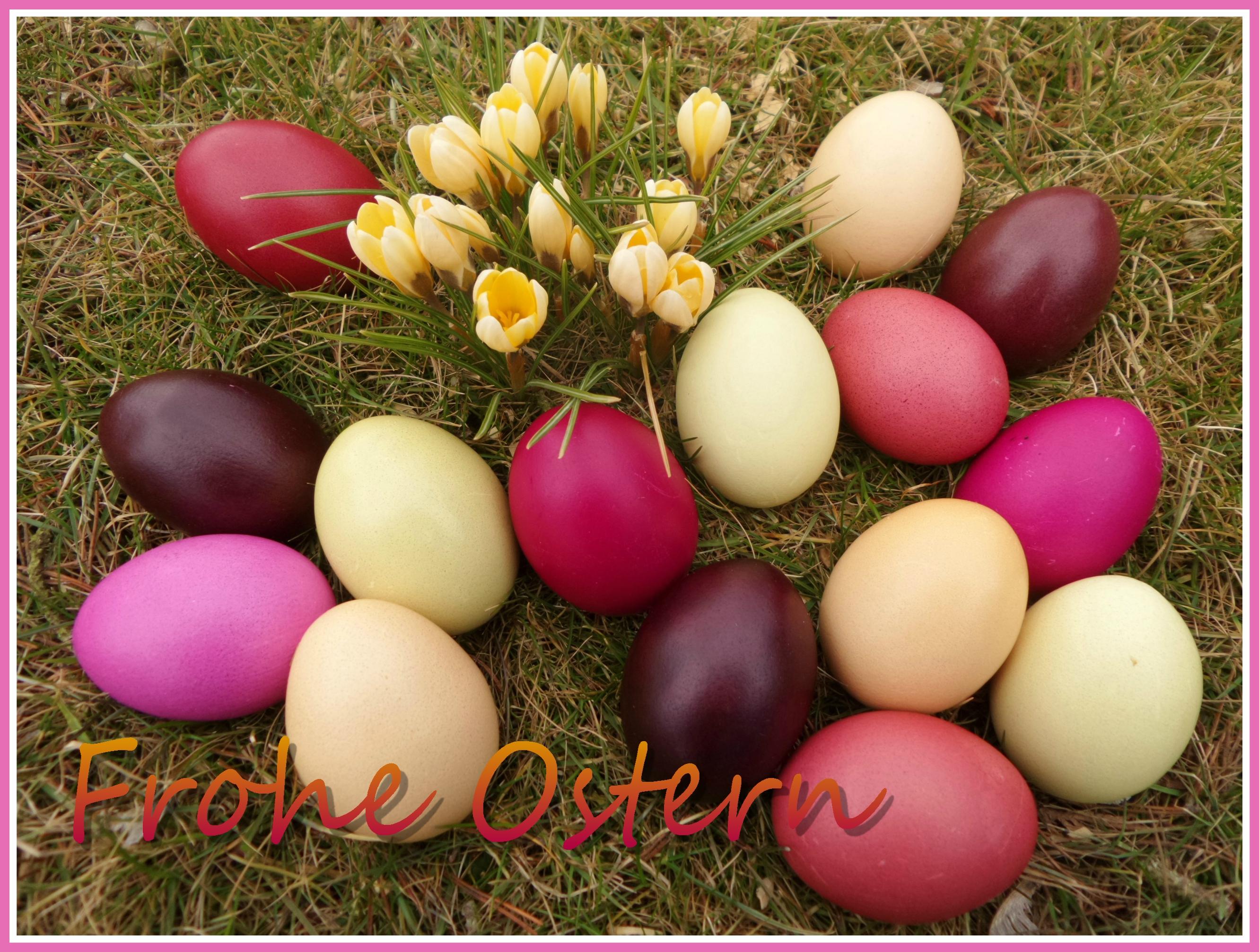 Gastbeitrag: Ostereier natürlich färben - nach alter Tradition