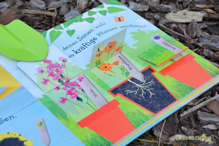 DK Wie wächst denn eine Sonnenblume? Kinderbuch Sachbuch Kindergarten Garten