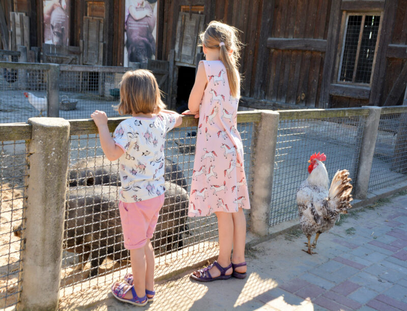 Smafolk Sommer Kinderbauernhof