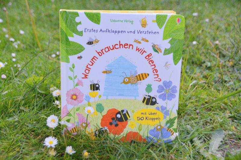 Zum Weltbienentag: Erstes Aufklappen und Verstehen – Warum brauchen wir Bienen?
