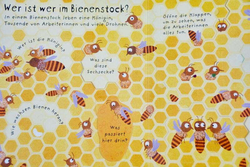 Warum brauchen wir Bienen? Bienenstock