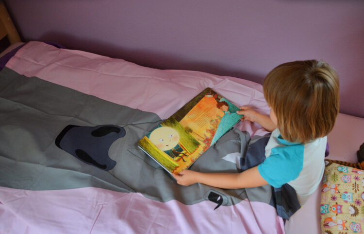 Einschlafen Bettwäsche Fred´s World by Green Cotton Pferd Carlsen Verlag Günther Jakobs Wenn der Mond die Sterne zählt ... und dem Kind beim Schlafen hilft