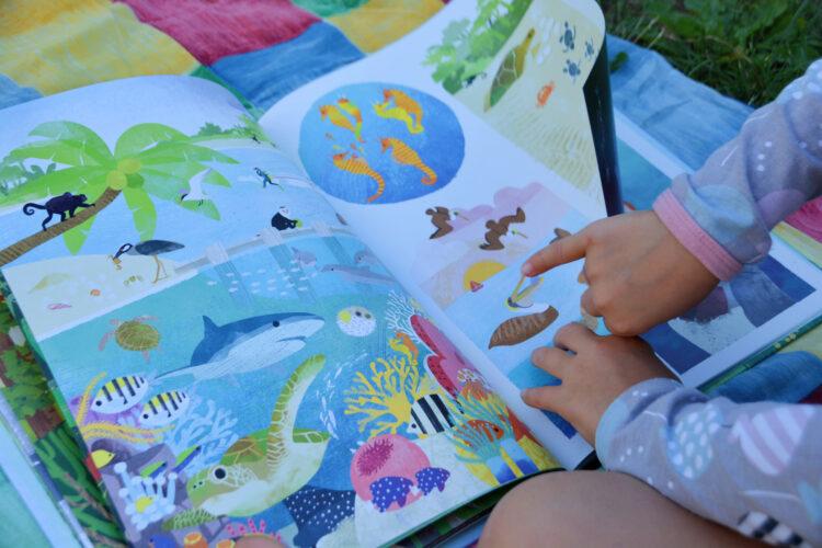 Ich erzähl dir die Welt - Naturgeschichten ohne Worte Kinderbuch Bilderbuch Natur Kate McLelland
