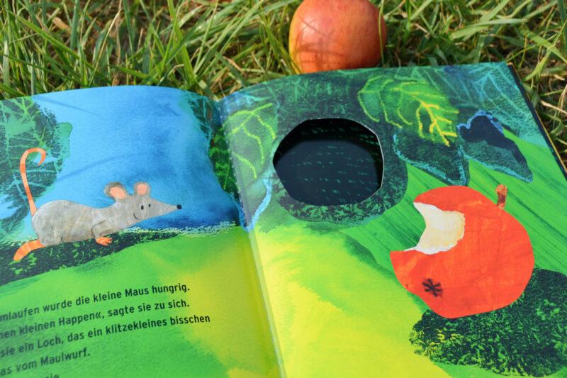 Die Maus sucht ein Haus Kinderbuch