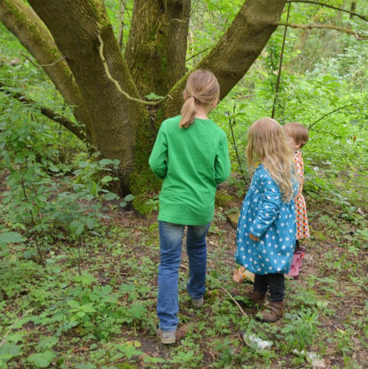 Kinder suchen einen Geocache