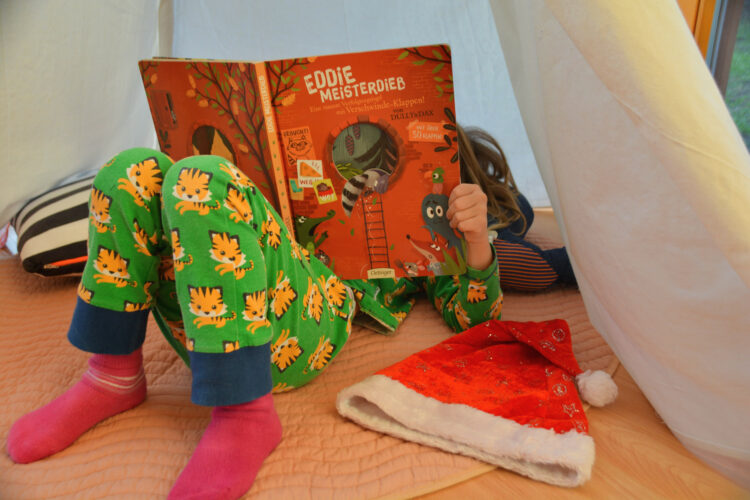 Kinderbuch Eddie Meisterdieb