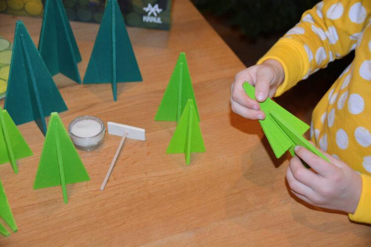 Waldschattenspiel Tannenbäume