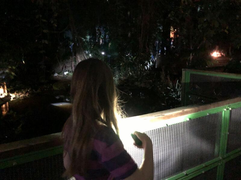 Die Biosphäre Potsdam bei Nacht: Ein Taschenlampen-Abenteuer für die ganze Familie