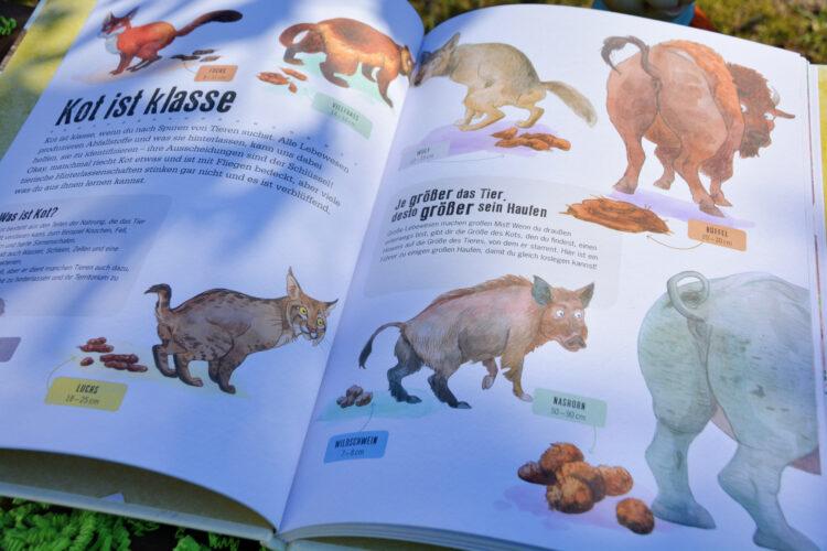 Carlsen Osterbox Tierbuch
