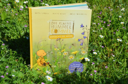 Summ, summ, summ! – Die kleine Hummel Bommel entdeckt die Wiese