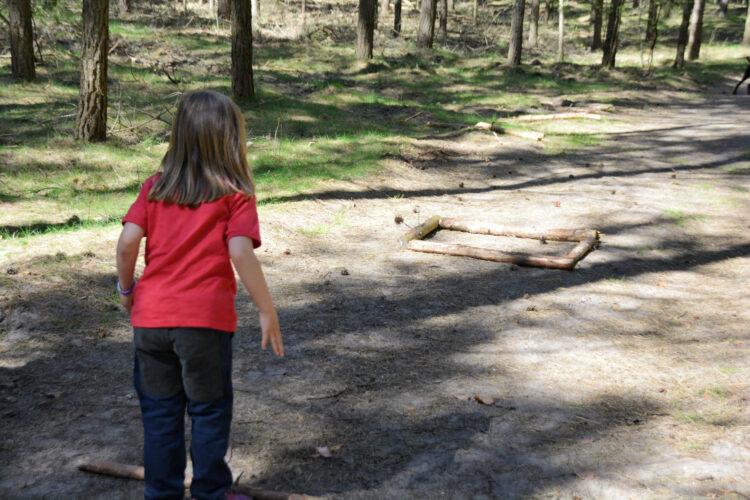 Kiefernzapfen Spiel im Wald