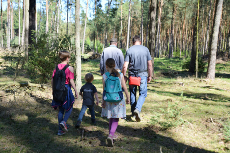 Wald-Tour Ferienpark Mirow