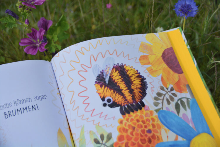 Bilderbuch Insekten und Summen