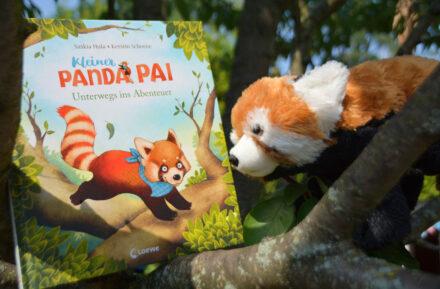 Kleiner Panda Pai – Unterwegs ins Abenteuer: Katzenbär oder Bärenkatze?
