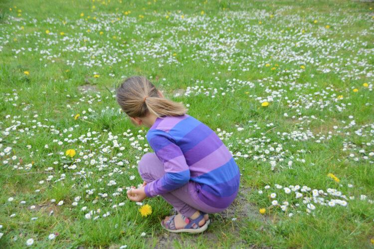 Blumen pflücken im Schlosspark