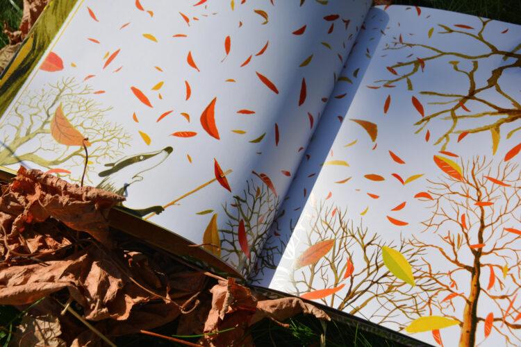 Den Dachs ärgern die Herbstblätter