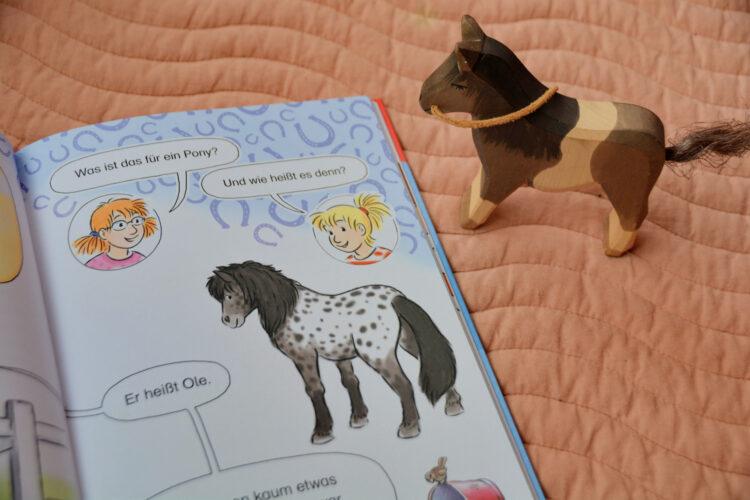 Conni und das neue Pony