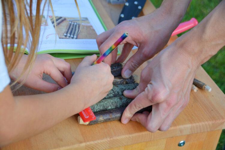 Floßbau Werken mit Kindern