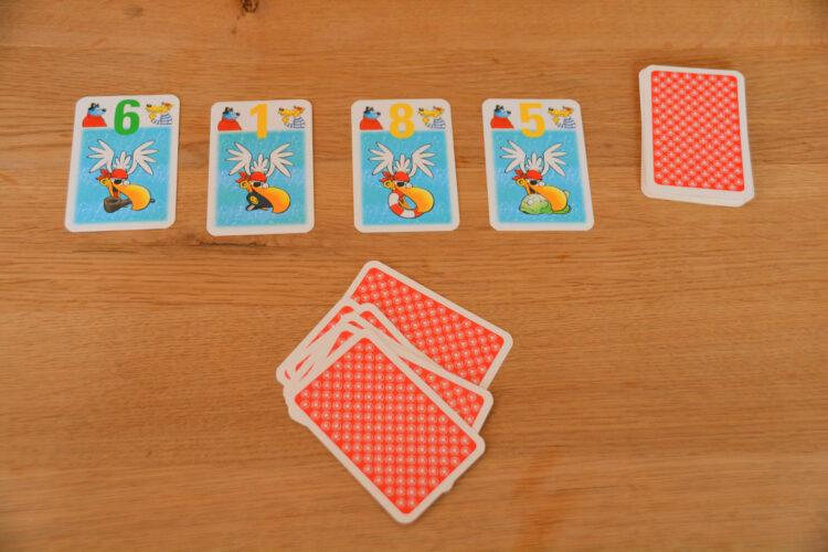 Raubmöwen-Zock Kartenspiel