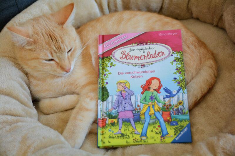 Der magische Blumenladen für Erstleser – Die verschwundenen Katzen