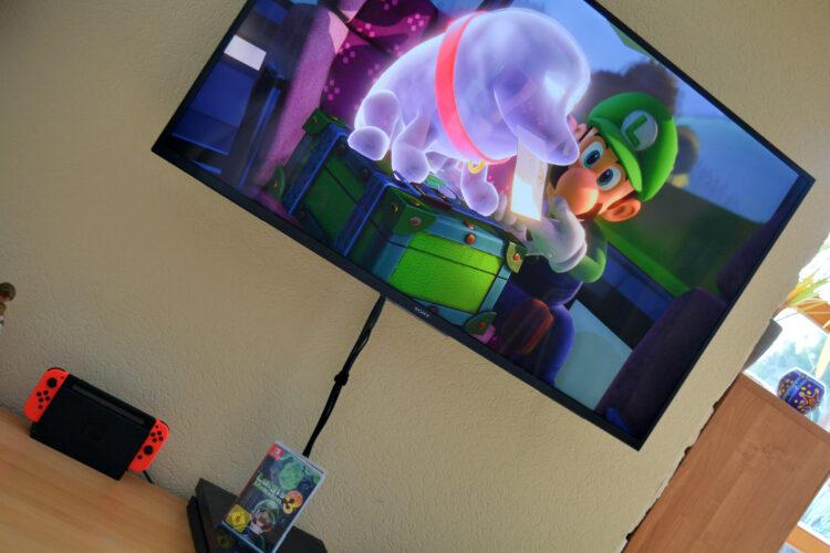 Luigi und sein Geisterhund