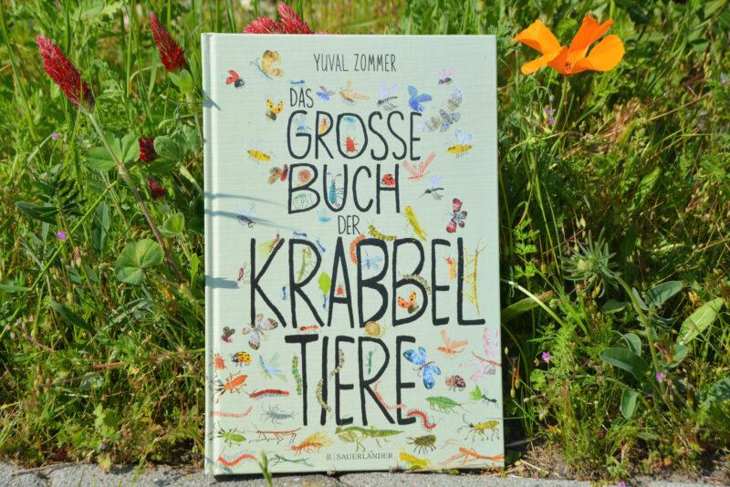 Das große Buch der Krabbeltiere: Es krabbelt, summt und brummt bei uns! + GEWINNSPIEL