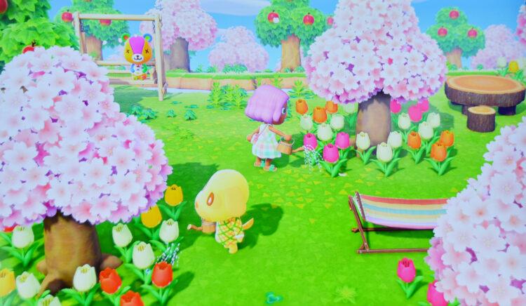 Blumen gießen Animal Crossing
