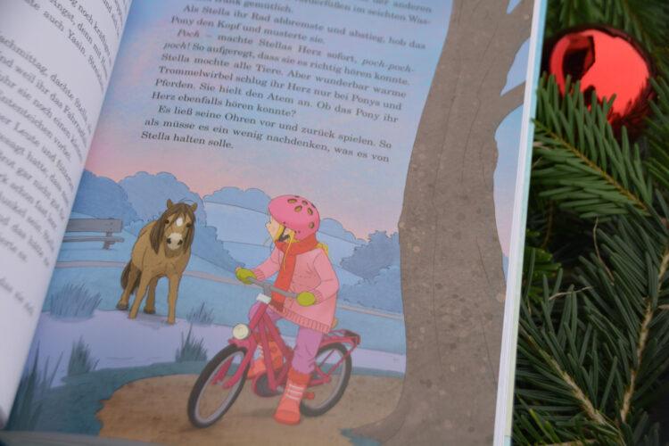 Adventskalender Kinderbuch Pony