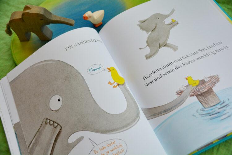 Kinderbuch Pflegekind Gänseküken